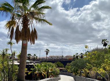 Tenerife Resort Invest - real estate - TRI045 - 25